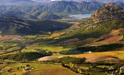Sur la route des vins de Patrimonio
